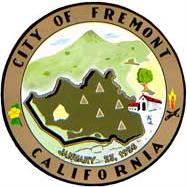 Fremont, California gold necklaces
